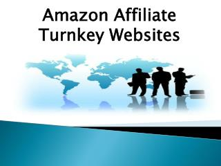 Amazon Affiliate Turnkey Websites