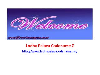 Palava Codename Z