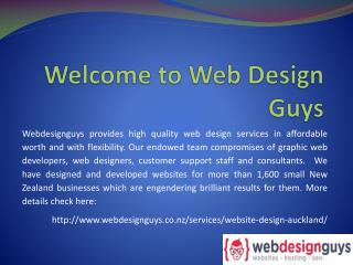 Affordable ecommerce website design auckland-Web design guys