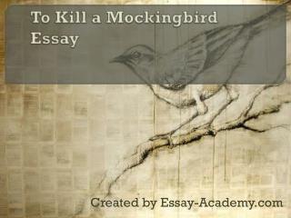 To Kill a Mockingbird Essay
