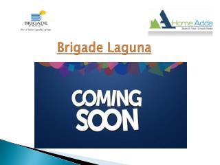 Brigade Laguna