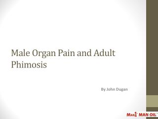 Male Organ Pain and Adult Phimosis