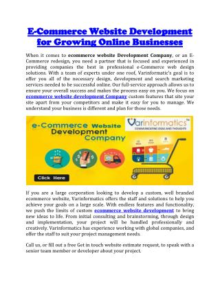 E-Commerce Website Development for Growing Online Businesses