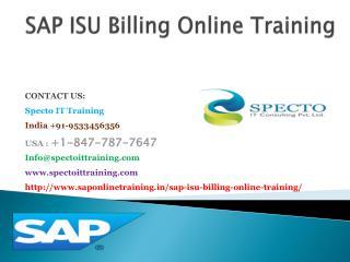 sap isu billing online training in singapore