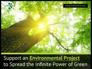 Support Sustainability Projects to Save Environment
