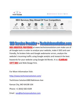 SEO Service Provider at techvisionsolution.com