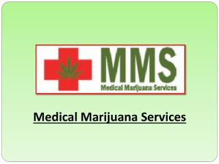 Treat Your Disease with Medical Marijuana Services