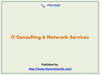 IT Consulting & Network Services