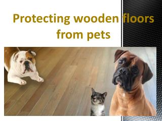 Protecting wooden floors from pets