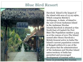 Blue Bird Resort