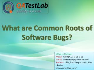 What are Common Roots of Software Bugs?