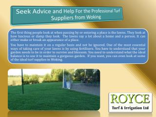 Seek Advice and Help For the Professional Turf Suppliers from Woking