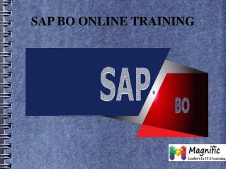 Sap bo online training Canada