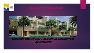 Residential Apartments Emaar MGF Palm Drive  Gurgaon