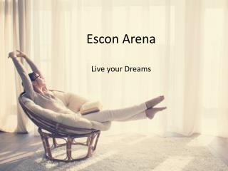 Buy Affordable Residential Flats in Zirakpur at Escon Arena