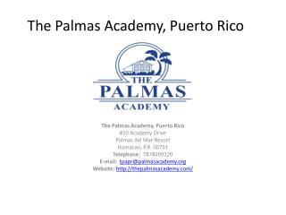 The Palmas Academy, Puerto Rico