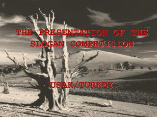 THE PRESENTATION OF THE SLOGAN COMPETITION   USAK