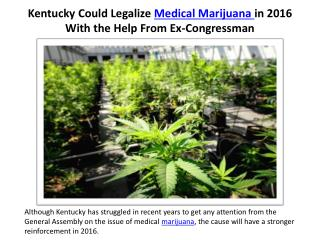 Kentucky Could Legalize Medical Marijuana in 2016 With the Help From Ex-Congressman
