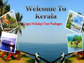 Kerala Tour Packages For family In reasonable price!