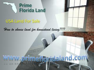 USA Land For Sale at Lowest Price !!!!!! Florida land