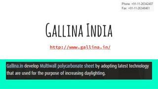 Gallina India