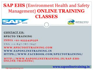 sap ehs online training in usa,australia