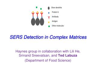 SERS Detection in Complex Matrices