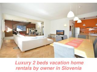 Luxury 2 beds vacation home rentals by owner in Slovenia