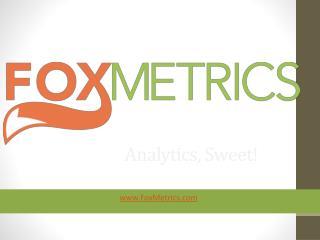 FoxMetrics Web Analytics Platform