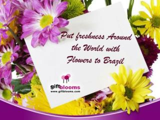 Put Freshness Around the World with Flowers to Brazil