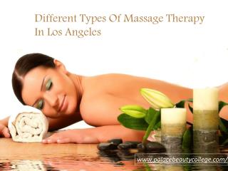 Massage Therapy License