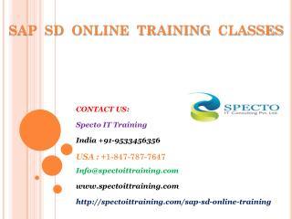 sap sd online training in usa,uk,australia,canada
