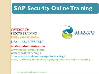 sap security training in usa,uk and australia