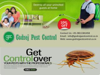 Get Flat 10% off on pest control Noida