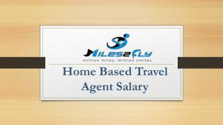 Home Based Travel Agent Salary