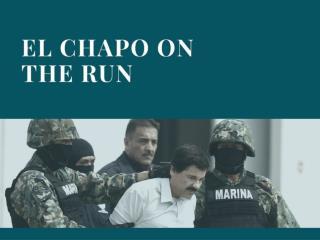 El Chapo on the run