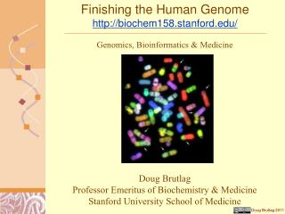 Finishing the Human Genome biochem158.stanford