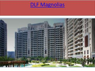 DLF Magnolias in sector 42 gurgaon