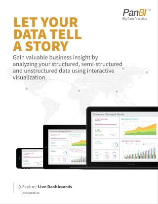 Virginia Business Intelligence Tool | PanBI Call 703-230-3136 or visit http://panbi.co