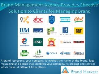 Brand Management Agency Provides Effective Solution to Clients for Managing Brand