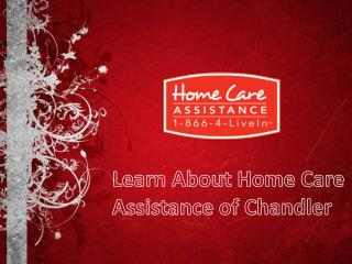 Learn About Home Care Assistance of Chandler