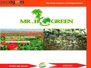 MR.B GREEN - Coir Products, Grow Bags, Manufacturer and  Distributor / Wholesaler-www.pepagora.com
