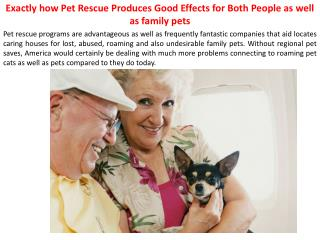 Exactly how Pet Rescue Produces Good Effects for Both People as well as family pets