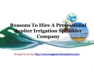 Reasons To Hire A Professional Jupiter Irrigation Sprinkler Company
