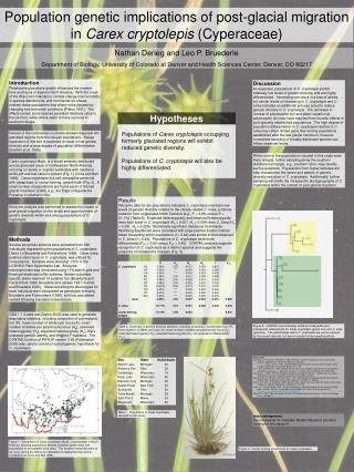 Population genetic implications of post-glacial migration in Carex cryptolepis Cyperaceae