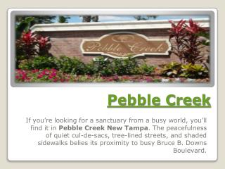 Homes For Sale in Pebble Creek