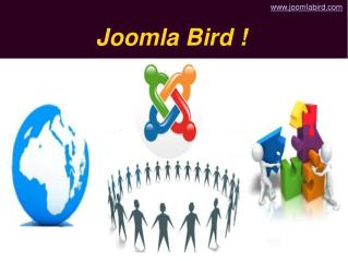 Joomla Bird - Joomla Services