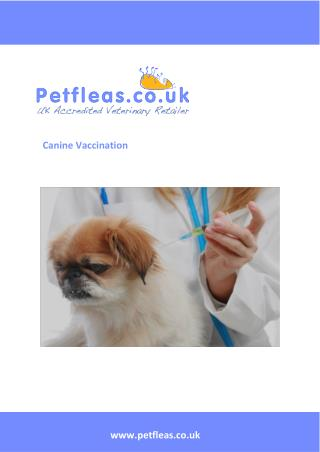 Canine Vaccinations