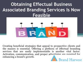 Obtaining Effectual Business Associated Branding Services Is Now Feasible