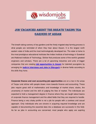 Job Vacancies Amidst The Breath Taking Tea Gardens Of Assam
